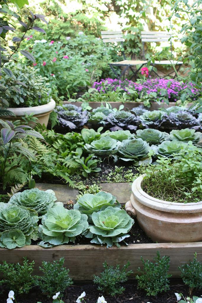 Огород с цветами и овощами