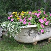 старая ванна для посадки растений
