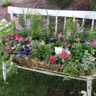 скамья с посаженными цветами