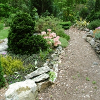 Swallowtail-Gardensкомпозиция из хвойных растений кругового обзора