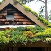 озеленение крыши жилого дома