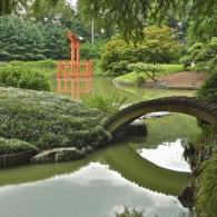мост через озеро в японском саду