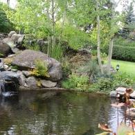 дизайн пруда с ручьем и водопадом
