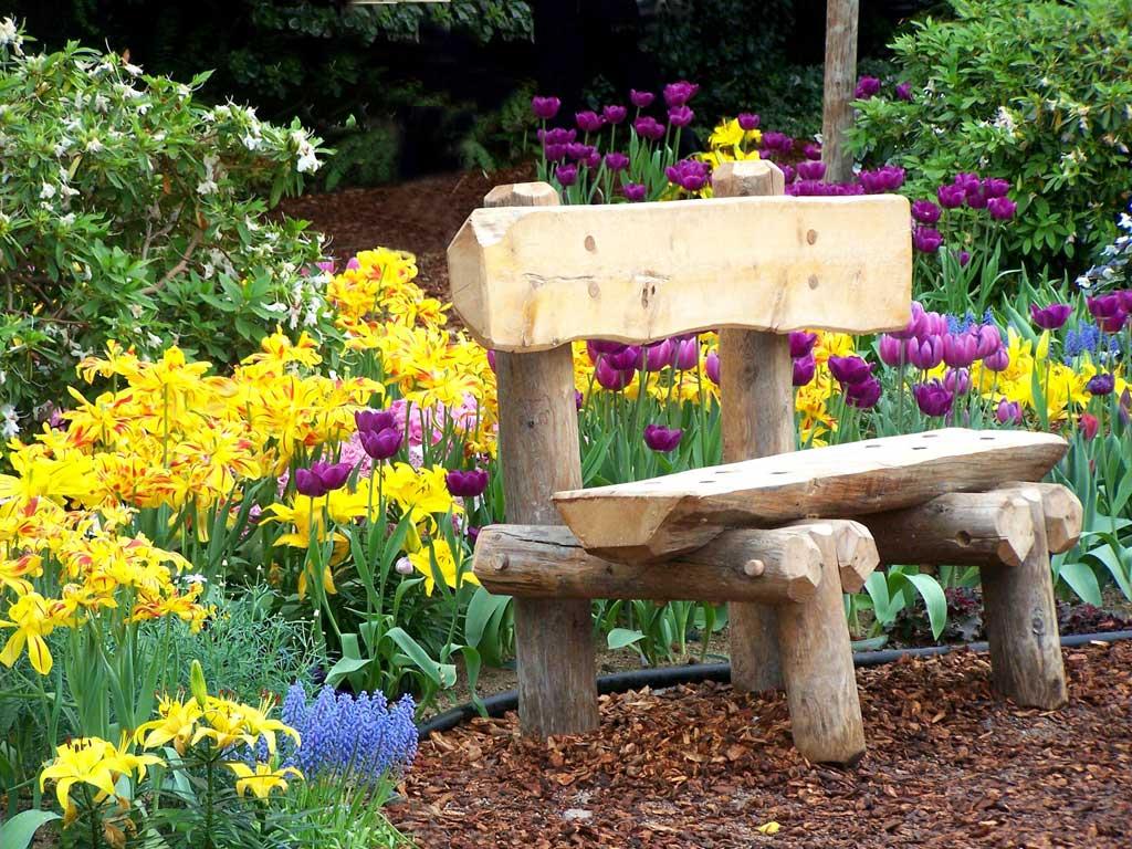 Красота в саду и на даче
