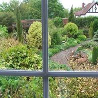 сад под окнами_фото