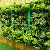 модульный вертикальный сад