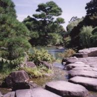 japan_garden
