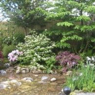 Echoes-of-Japan-in-an-English-Garden