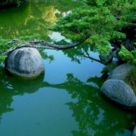 Japan - Rock Garden