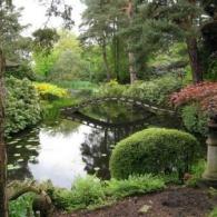 Japanese-Garden-Tatton-Park_66