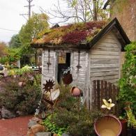 зеленая крыша дачного туалета