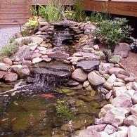 камни для оформления водоема