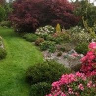 Сад с рододендронами