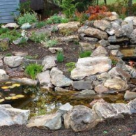 WaterFeatureRockGarden001
