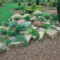 how-to-build-rock-garden-1