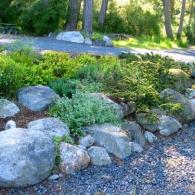 rock-garden_lo