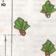 Схема посадки ирисов № 2