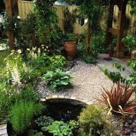 маленький сад и пруд в нем