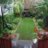 газон в окружении декоративных растений