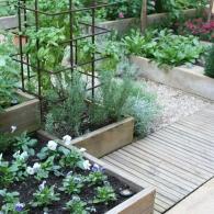 сочетания фактур и уровней в маленьком саду