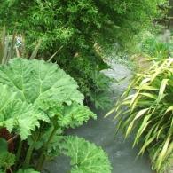 ручей в саду_фото