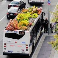 roof-garden-bus