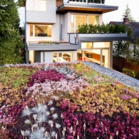living_roof_design
