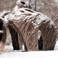 Brooklyn Botanic Garden in winter snow