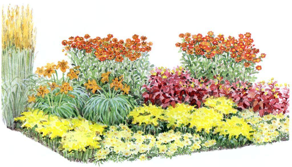 Перечень растений в цветнике: