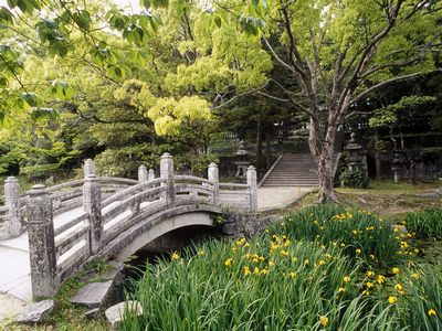 японский сад_фото