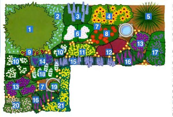 схема цветника непрерывного цветения