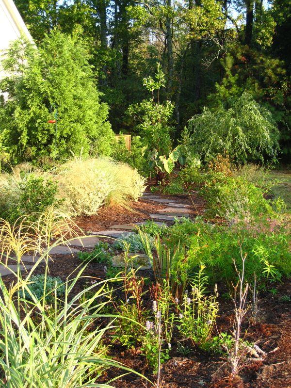 пряный садик