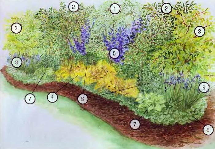 дизайн садовых дорожек_картинки