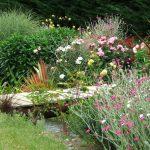 сад в июле_фото