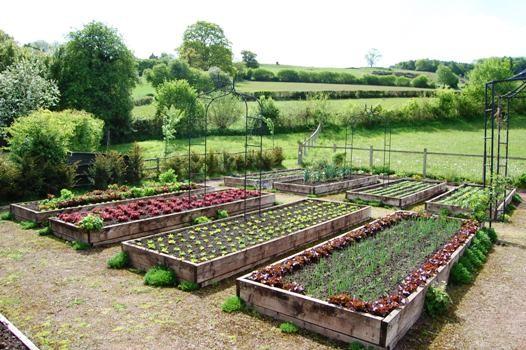 Свой огород своими руками фото