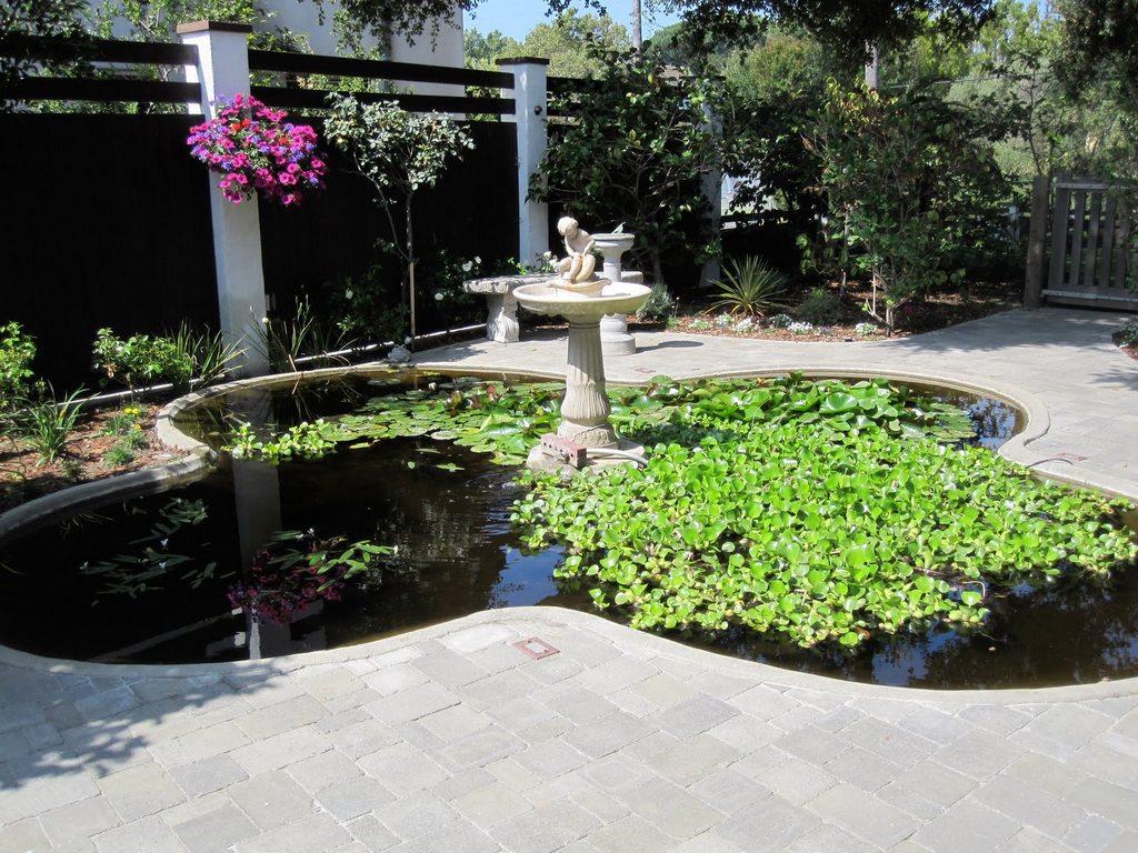 for Secret garden pool novaliches
