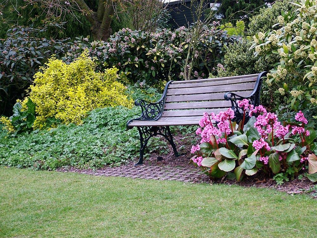 Скамейки в саду дизайн
