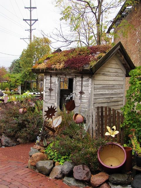 озеленение крыши уличного туалета