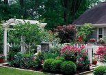 маленький садовый участок фото