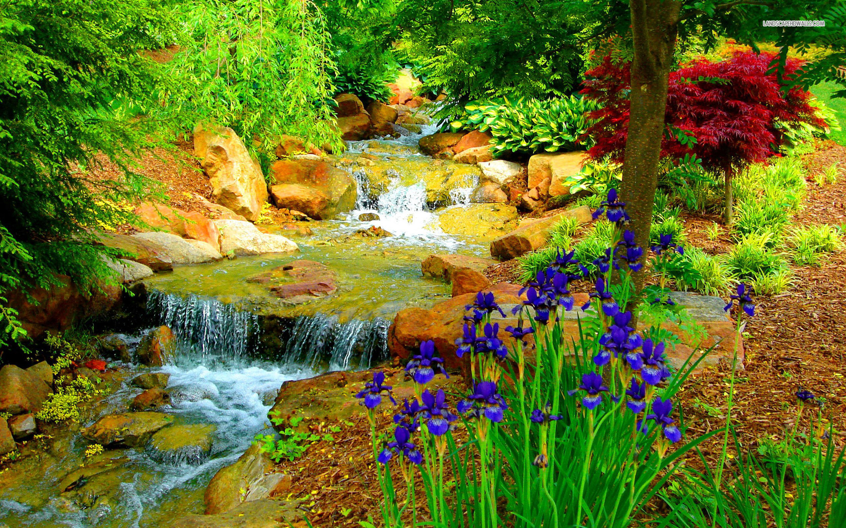 small-stream-in-the-flower-garden-2371-1680x1050
