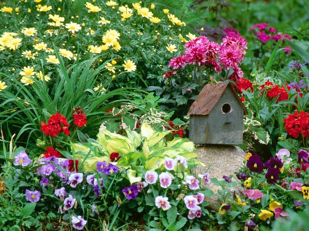 Многоцветье весенней клумбы