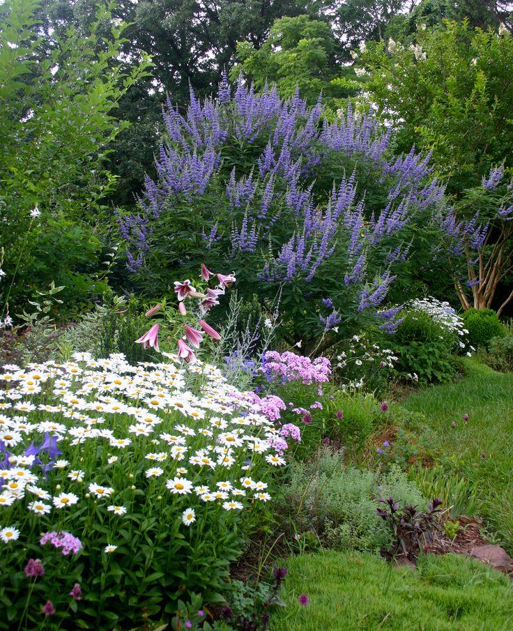 Можно ли сажать рядом лилии разных цветов